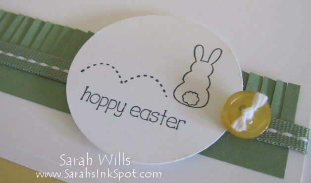 closeup-hoppy-bunny-circle