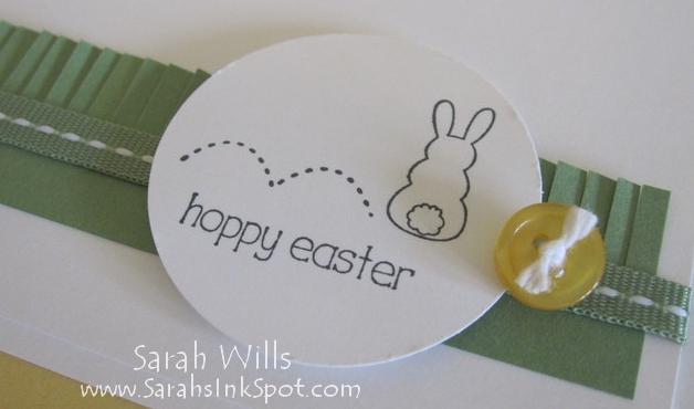 closeup-hoppy-bunny-circle