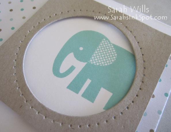 baby-elephant-closeup