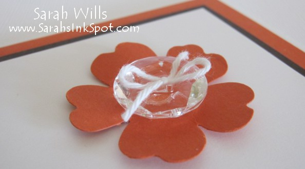 close-up-orange-pansy