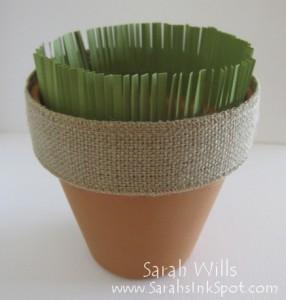 seed-pot-10