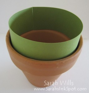 seed-pot-3