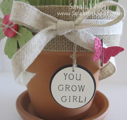seed-stick-pot-label