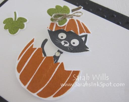 cat-halloween-closeup