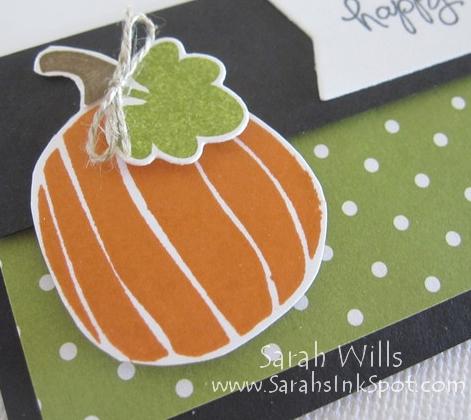cat-halloween-pumpkin