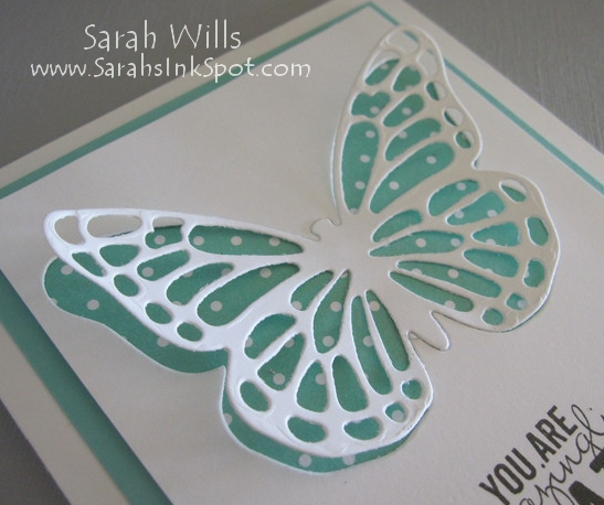 closeup-butterfly-wings