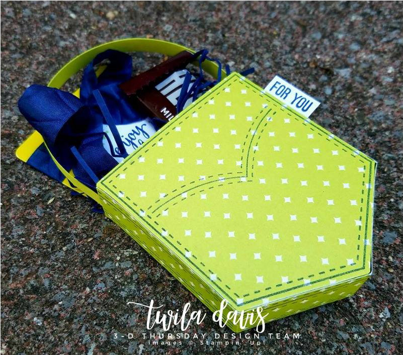 3-D-Pocket-Fun-Project-Twila-Davis-Side