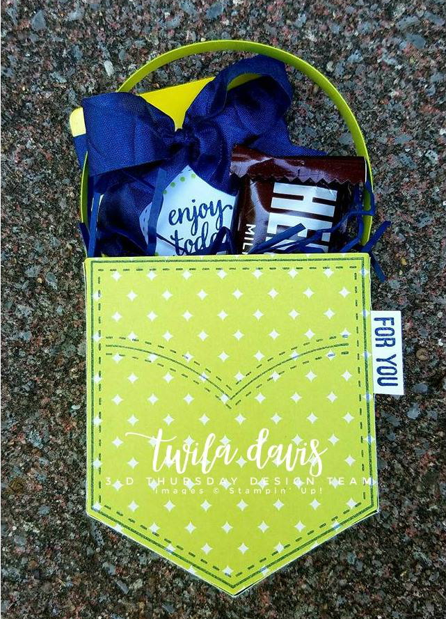 3-D-Pocket-Fun-Project-Twila-Davis-front