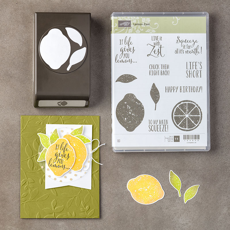 Stampin-Up-Lemon-Zest-Bundle-Sarah-Wills-Sarahsinkspot-Stampinup-