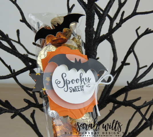 Stampin-Up-3D-Thursday-Cello-Bag-Topper-Spooky-Sweets-Bundle-Bats-Punch-Kids-Halloween-Treat-Toil-Trouble-Idea-Sarah-Wills-Sarahsinkspot-Stampinup-149973-149974-Topper2
