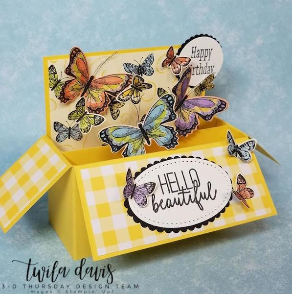 Stampin-Up-2019-Occasions-Catalog-Butterfly-Gala-Botanical-Butterfly-DSP-Saleabration-Sab-Box-Card-Gingham-Sarah-Wills-Sarahsinkspot-Stampinup-1