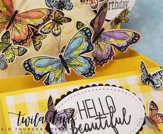 Stampin-Up-2019-Occasions-Catalog-Butterfly-Gala-Botanical-Butterfly-DSP-Saleabration-Sab-Box-Card-Gingham-Sarah-Wills-Sarahsinkspot-Stampinup-2