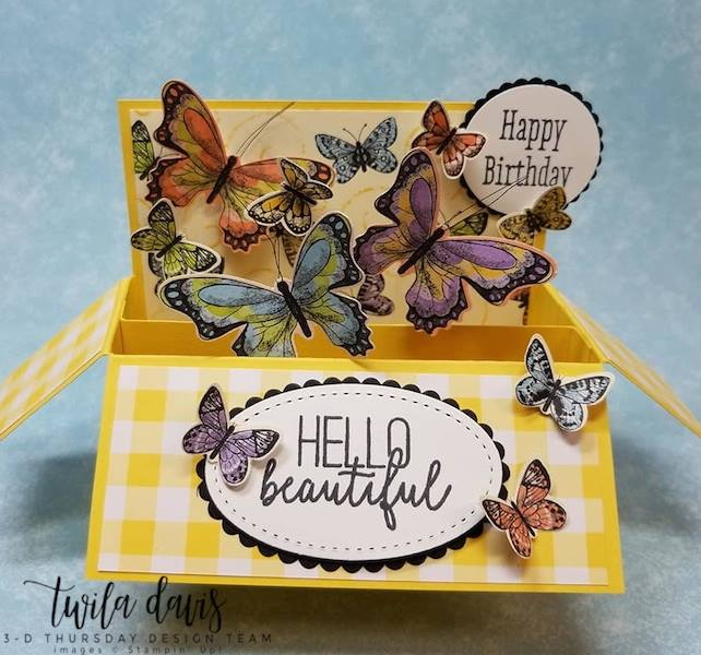 Stampin-Up-2019-Occasions-Catalog-Butterfly-Gala-Botanical-Butterfly-DSP-Saleabration-Sab-Box-Card-Gingham-Sarah-Wills-Sarahsinkspot-Stampinup-3