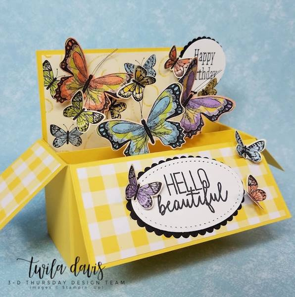 Stampin-Up-2019-Occasions-Catalog-Butterfly-Gala-Botanical-Butterfly-DSP-Saleabration-Sab-Box-Card-Gingham-Sarah-Wills-Sarahsinkspot-Stampinup-5